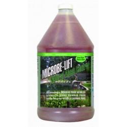 Microbe-Lift Natural Algae Control voor zwemvijvers